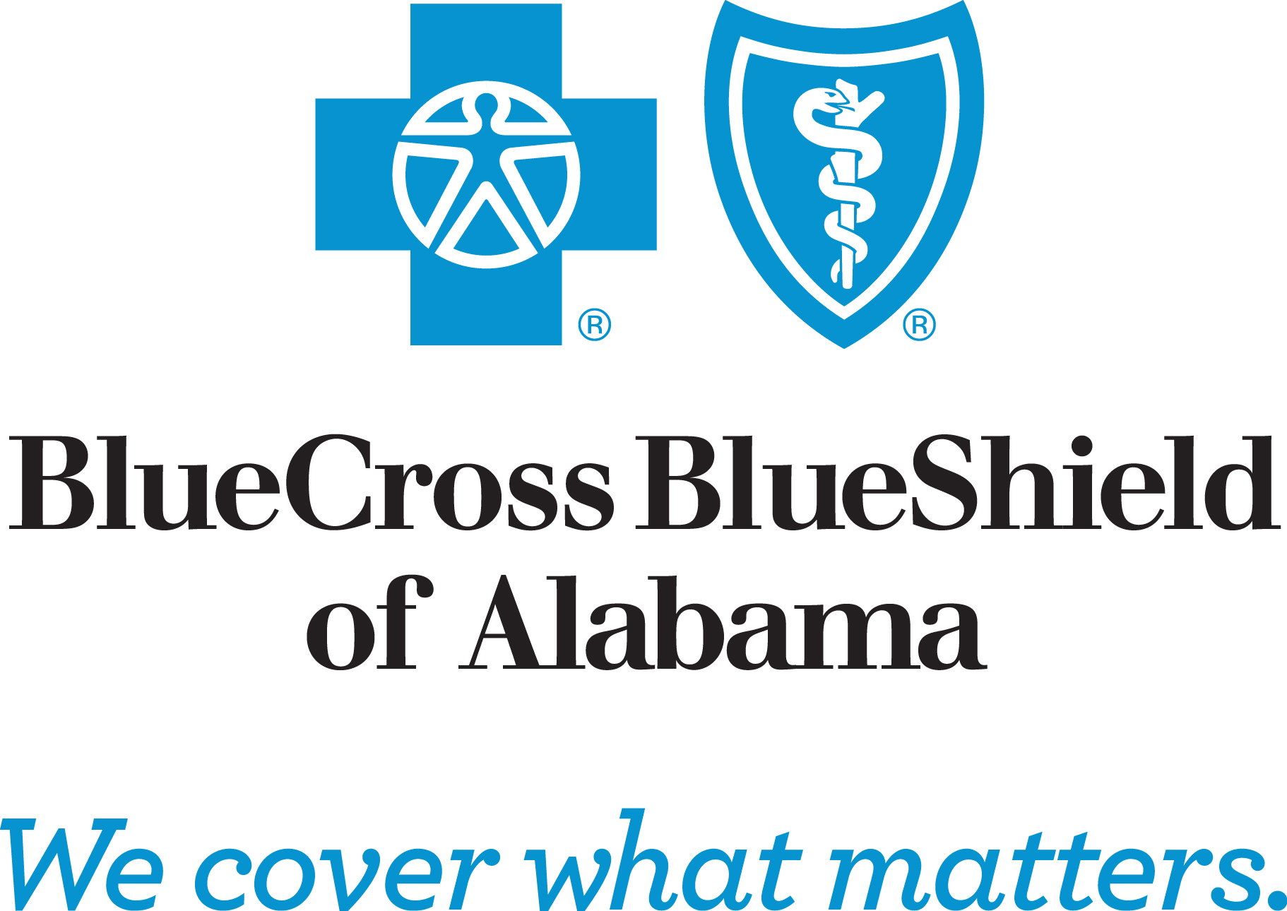 Blue Cross Blue Shield The Caring Foundation