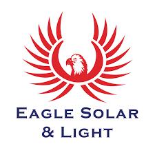 Eagle Solar and Light Fry Team