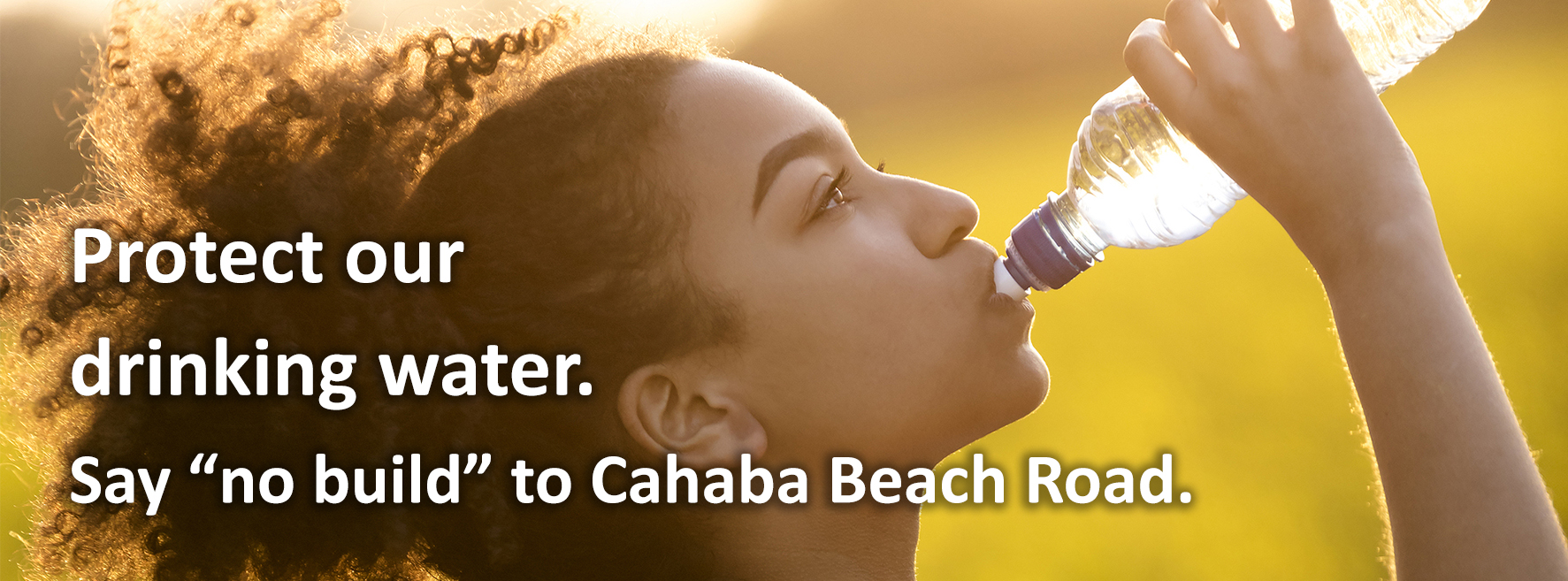 Say no build to Cahaba Beach Road.
