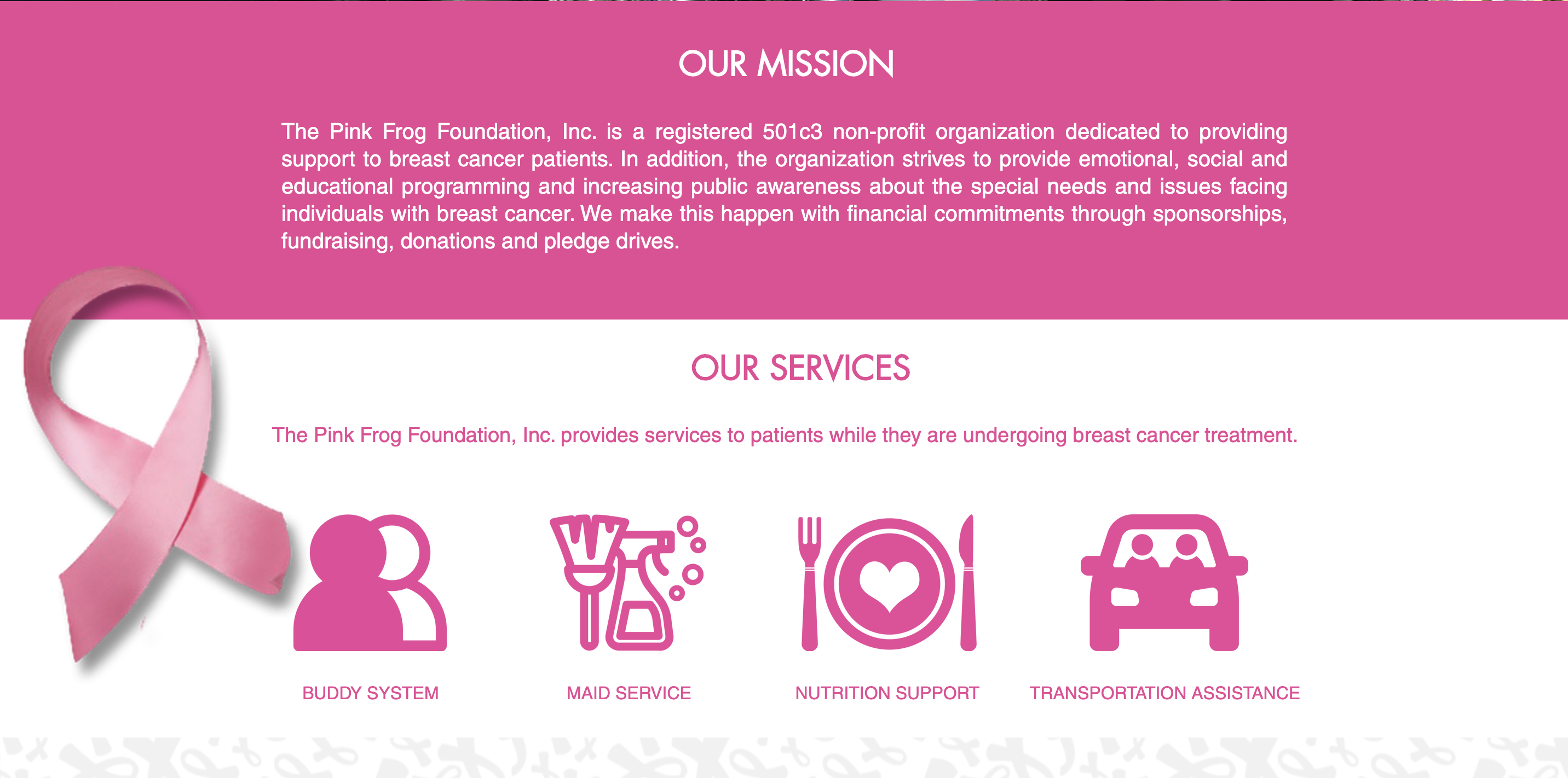 The Pink Frog Foundation Overview